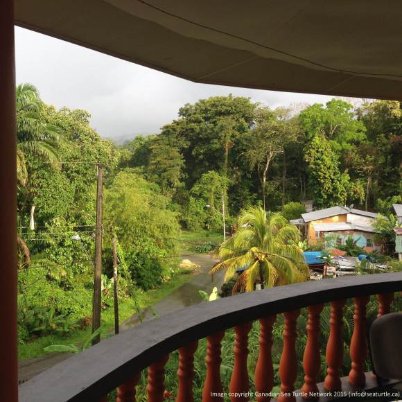 The view from the balcony at Suzan's Guest House.