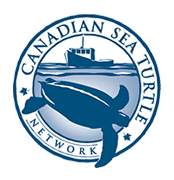 Canadian Sea Turtle Network