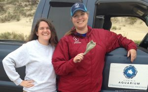 Virginia Aquarium Stranding Team intern Christina Lavin (left) and Stranding Team volunteer Kelly Bushnell holding the tag. Kelly was the person who ultimately found it!